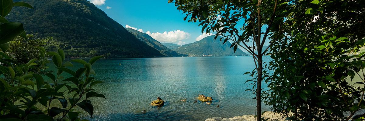 Greenchalets meer van Lugano